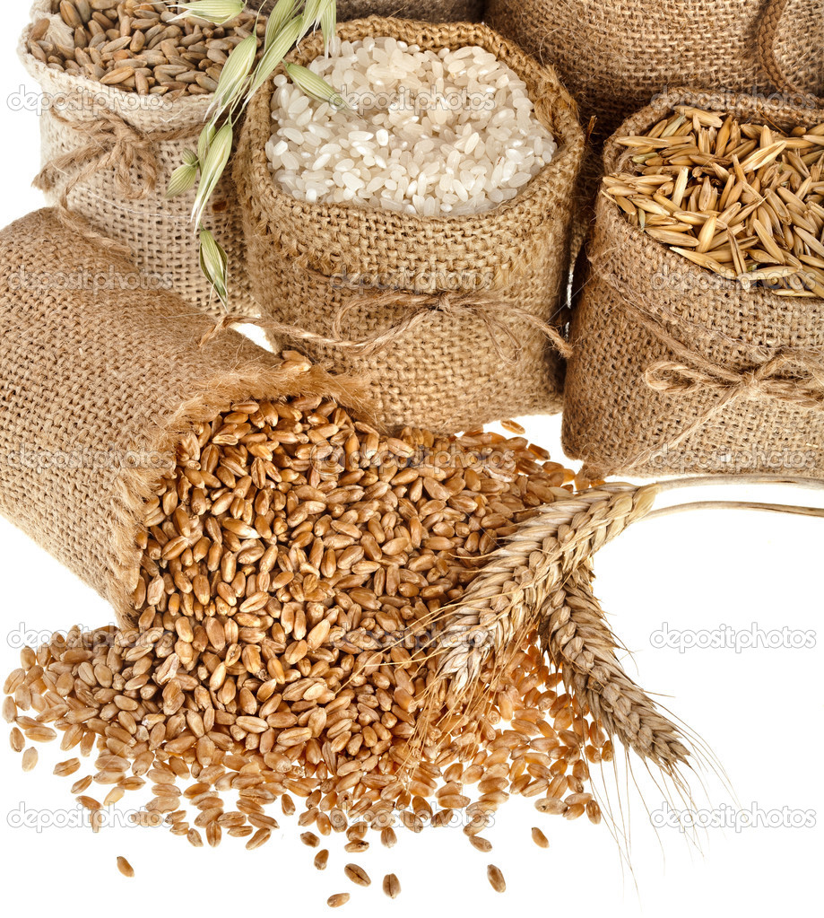 depositphotos_38076077-stock-photo-corn-kernel-seed-meal-and